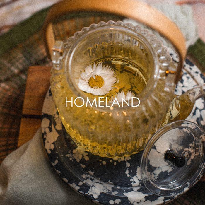 Shop homeland >