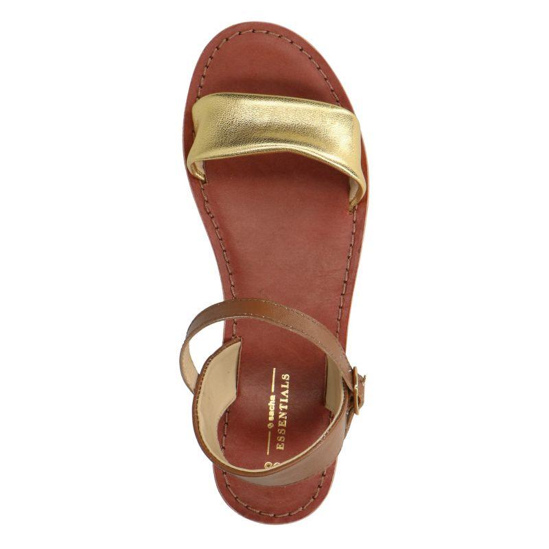 Bruin met gouden sandalen