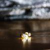 LUZ Clous d'oreille étoiles - doré