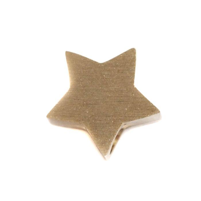 LUZ gouden ster bedel