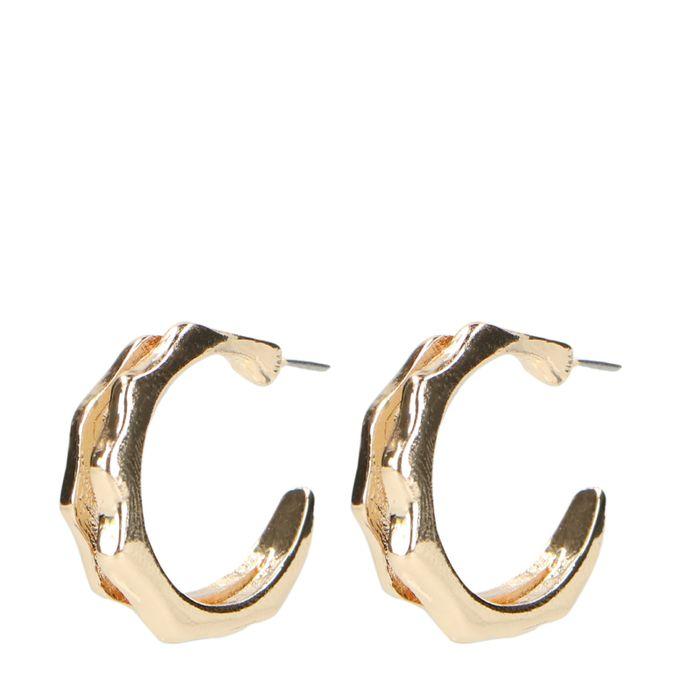 Goudkleurige oorbellen ringetjes