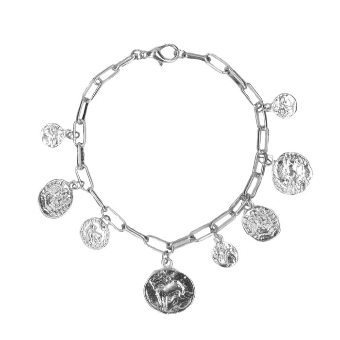 Zilverkleurig armbandje met coins