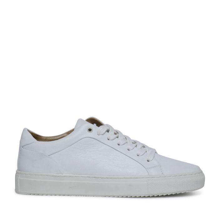 e1b8738cda8 Witte lage sneakers - Damesschoenen – SACHA