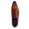 Chaussures à lacets avec imprimé serpent - cognac