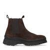 Chelsea boots en daim - marron foncé