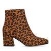Stiefeletten mit Leopardenmuster und kleinem Absatz